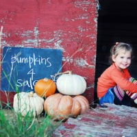 {photography with lei} holiday photos: fall & halloween