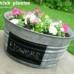 Washtub Planter