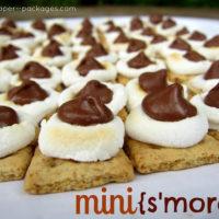 {mini s'mores}