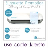 {silhouette promo and PORTRAIT giveaway!!!}