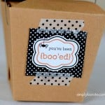 You've Been Boo'ed!!  {FREE printables!}