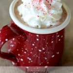 {homemade hot chocolate with peppermint cream}