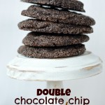 {double chocolate chip cookies}
