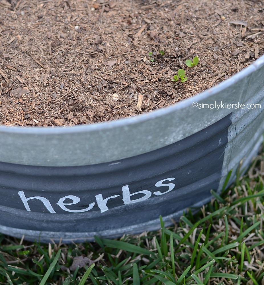 My Gro-ables Herb Garden Update!