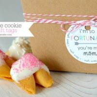 Fortune Cookie Gift Tags & Free Printable {Mother's Day and Friendship}