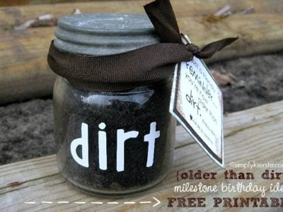 Older than Dirt | Celebrating Milestone Birthdays |simplykierste.com