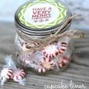 Cupcake Liner Treat jar | simplykierste.com