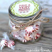 Easy Cupcake Liner Gift Jars