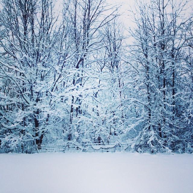 #winterwonderland #upstatenewyork