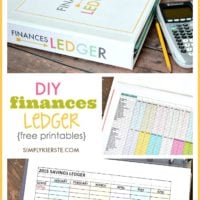 DIY Finances Ledger