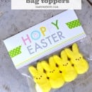 Hoppy Easter Bag Toppers from Simply Kierste --- perfect for packaging Peeps and other yummy Easter treats!