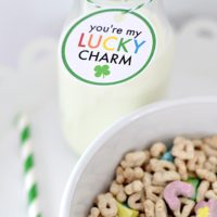 You are my lucky charm! St. Patrick's Day free printable