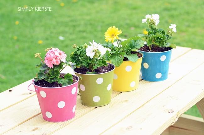 Polka Dot Pail Flower Planter | oldsaltfarm.com