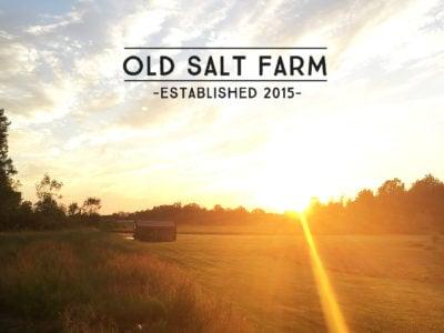 old salt farm   simplykierste.com