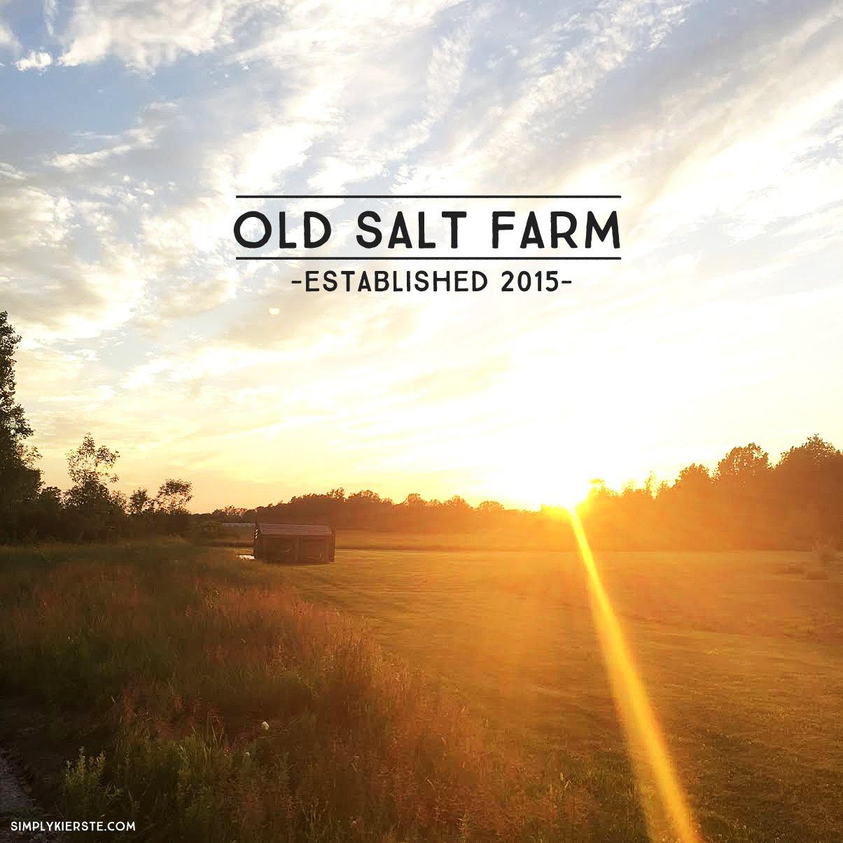 Building Old Salt Farm
