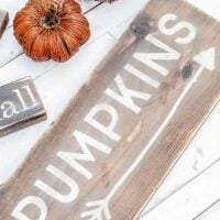 DIY Pumpkin Fall Signs