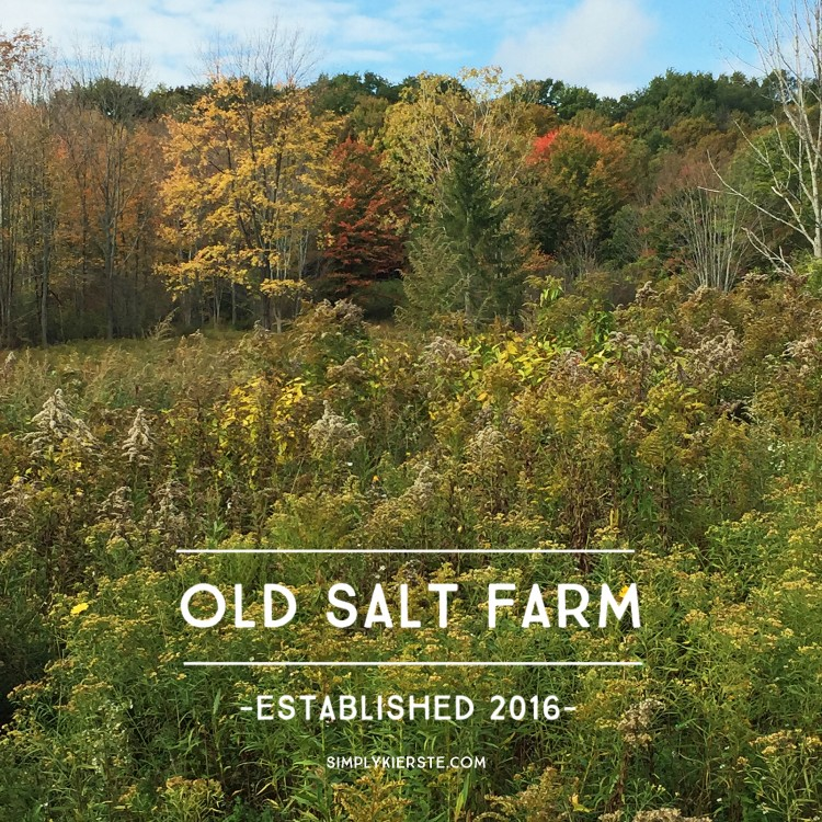 old salt farm | simplykierste.com