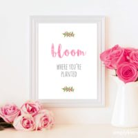 Bloom Where You're Planted Print | 11x14, 8x10, 5x7 sizes | simplykierste.com