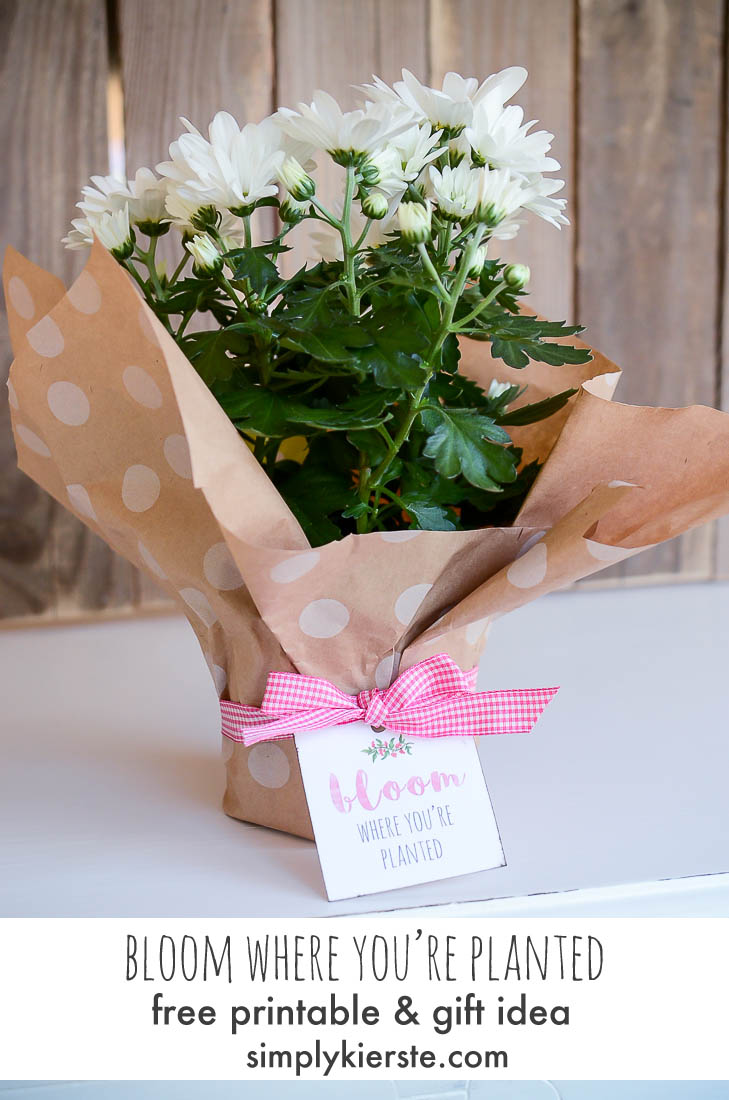Bloom Where You're Planted: Housewarming Gift Idea