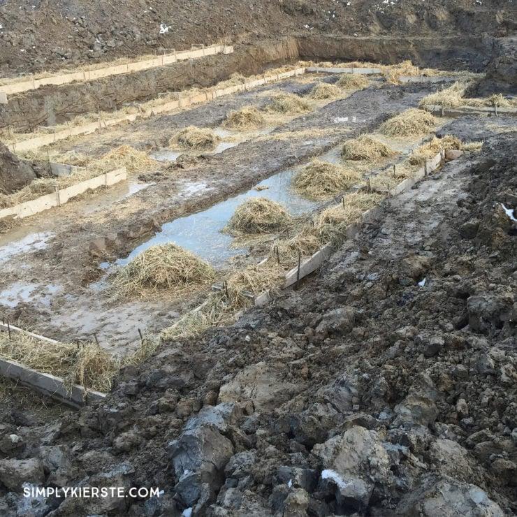 Building Old Salt Farm: Progress Month One   simplykierste.com