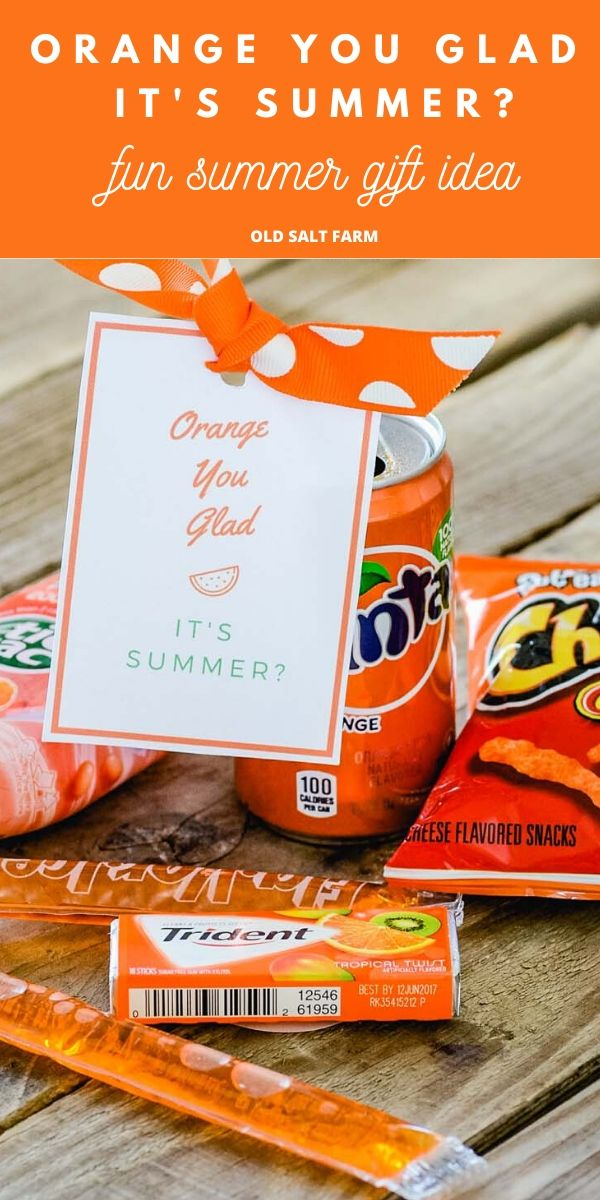 Orange You Glad It's Summer