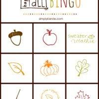 Fall Bingo Game {Free Printable}