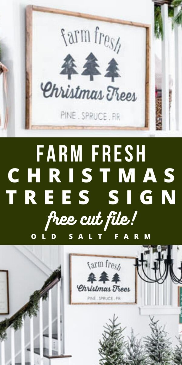 DIY Fresh Cut Christmas Trees Sign