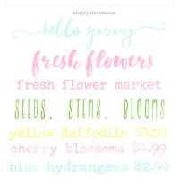 Watercolor Spring Overlays