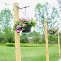 Outdoor String Lights on DIY Posts | oldsaltfarm.com