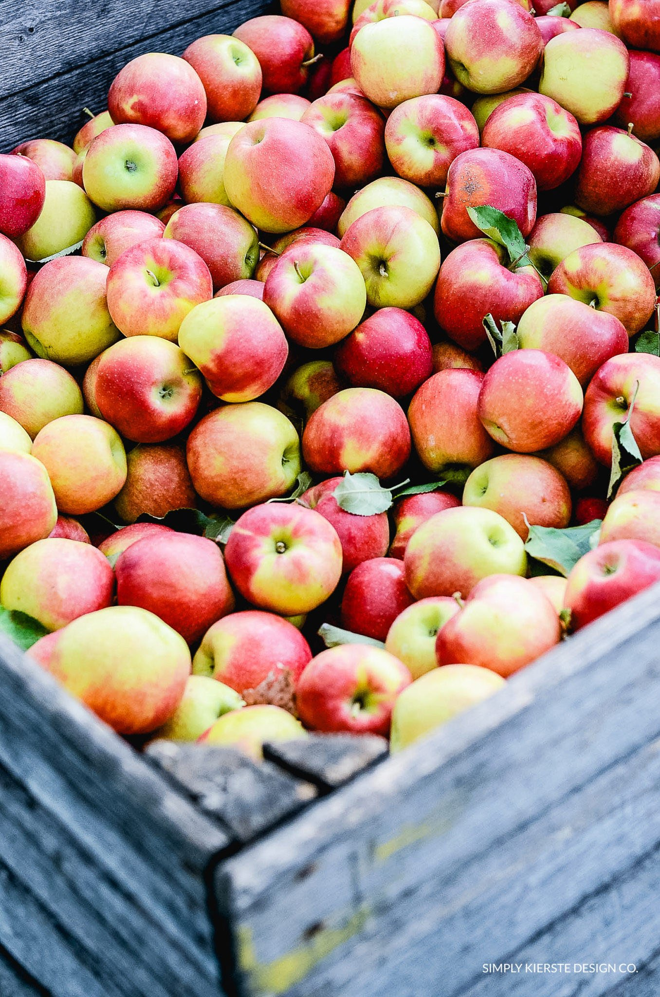 Apple Picking | Apple Farm | Fall Family Tradition | simplykierste.com