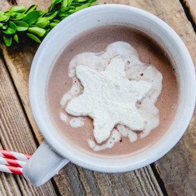 Frozen Whipped Cream Cubes | Hot Chocolate | oldsaltfarm.com #hotchocolateideas #hotchocolatetoppings #whippedcream
