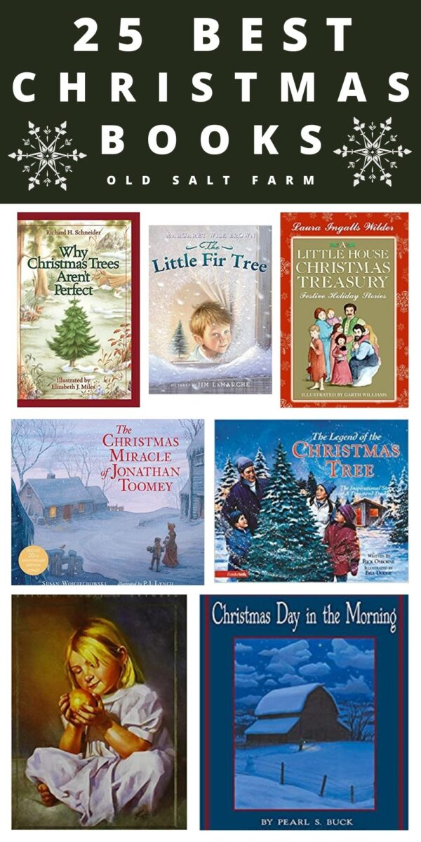 25 Best Christmas Books for Kids