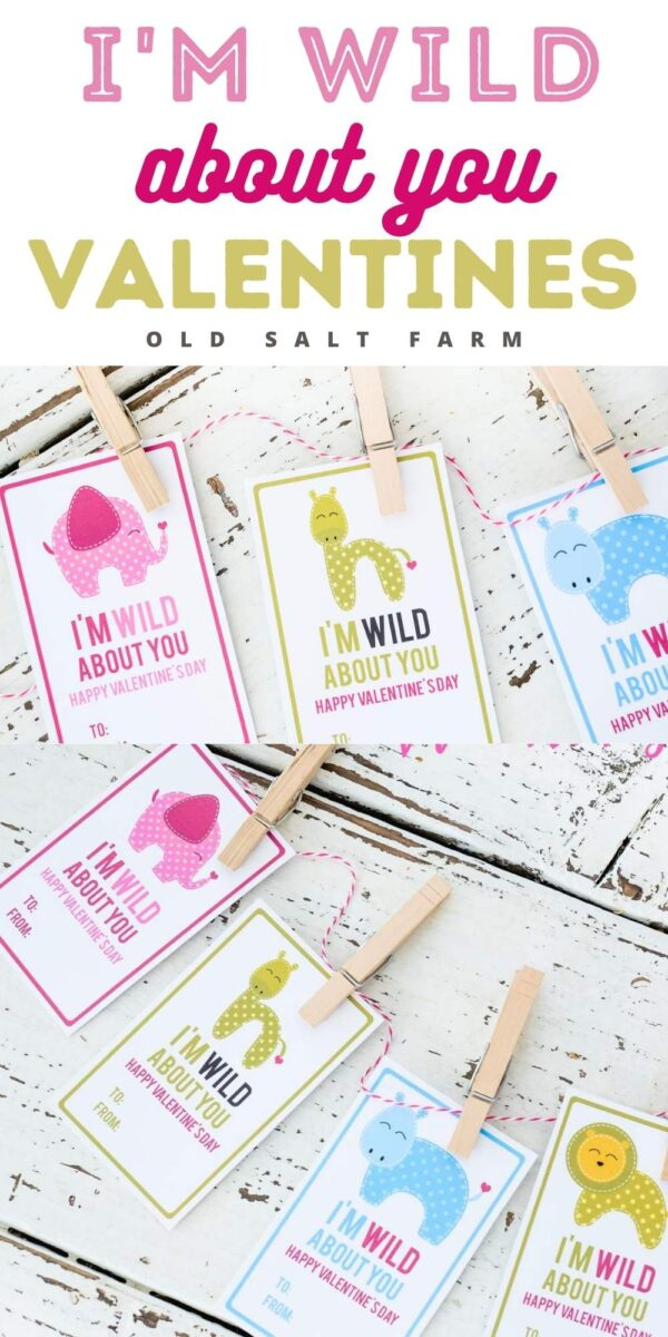 I'm Wild About You Valentines