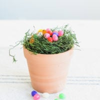Easter Tradition: Lollipop Garden