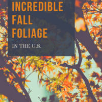 Five Spots To See Incredible Fall Foliage