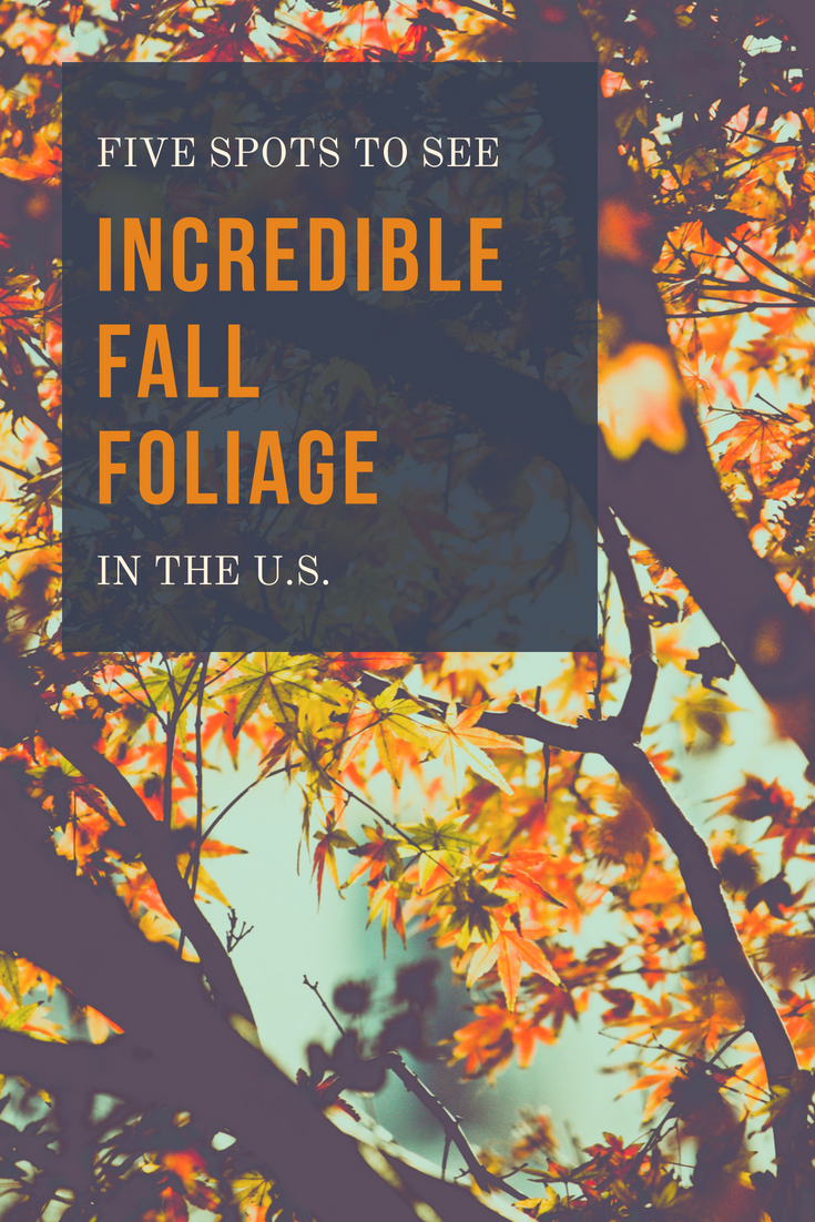 Five Spots To See Incredible Foliage in the U.S.