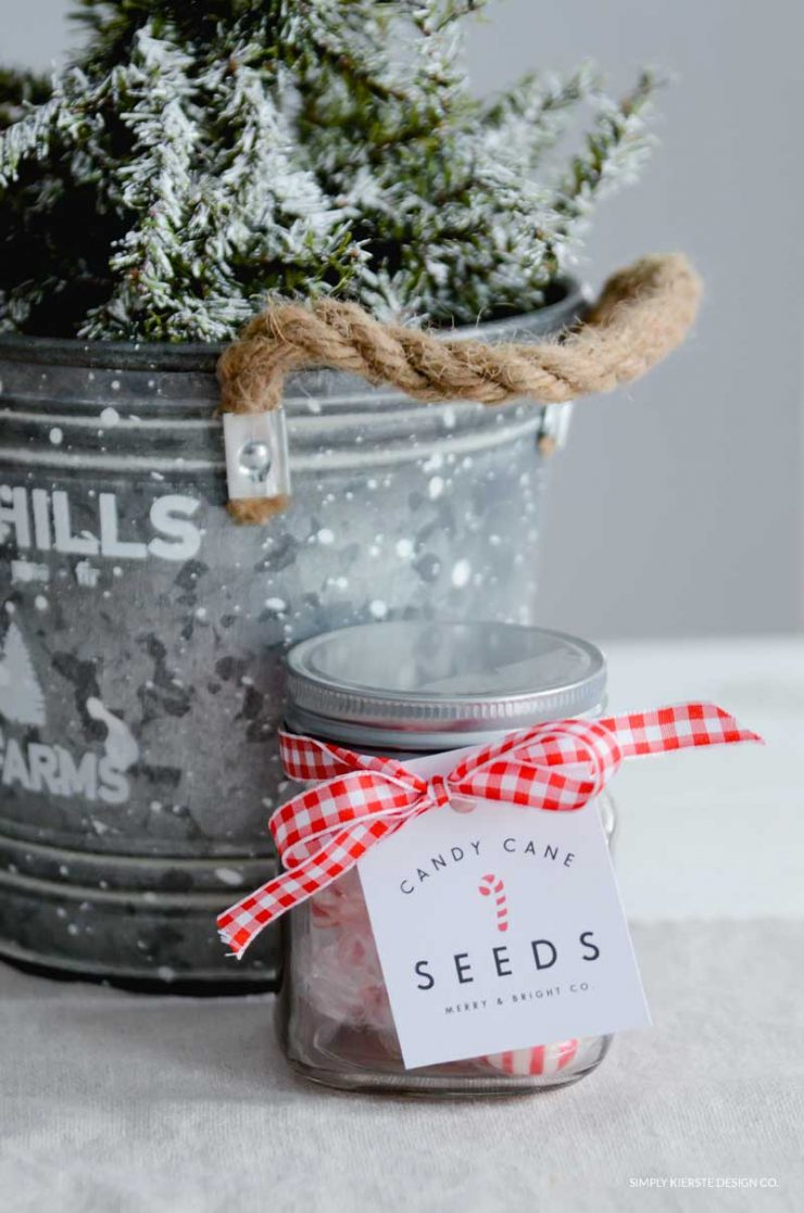 Candy Cane Seeds | Christmas Gift Idea & Printable