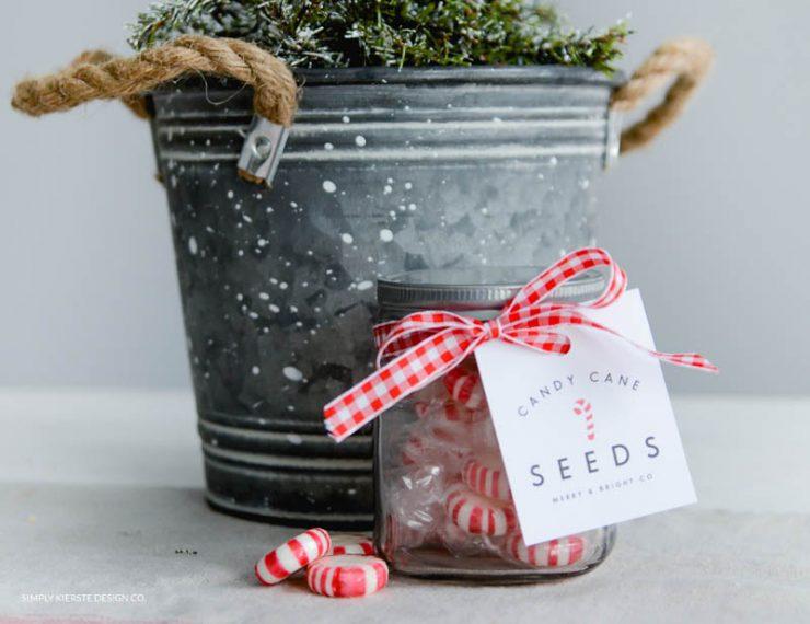 Candy Cane Seeds | Christmas Gift Idea & Printable