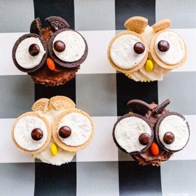 Owl Cupcakes Fall Halloween Treats