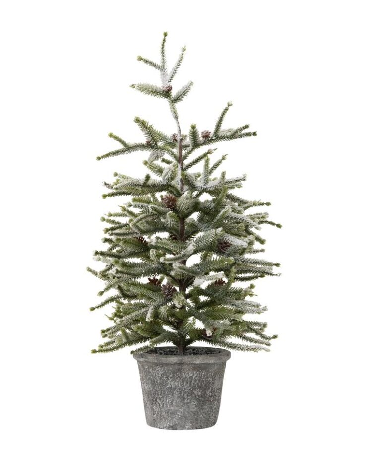 Dusted Pinecone Tree