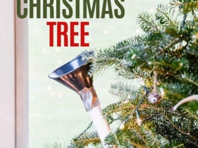 Easiest Way to Water a Christmas Tree!