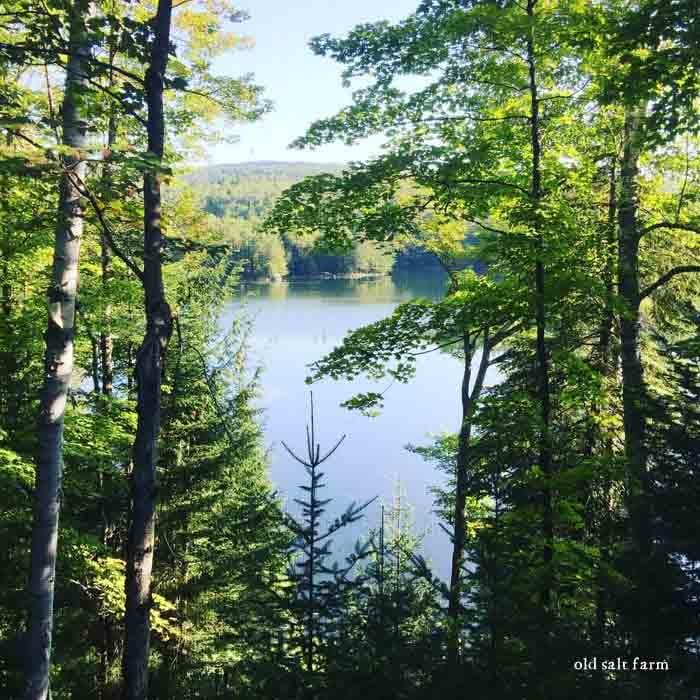 Adirondack mountains lake view