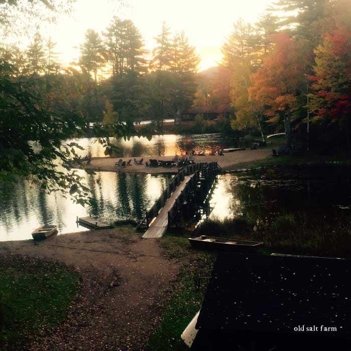 Lake Minerva NY