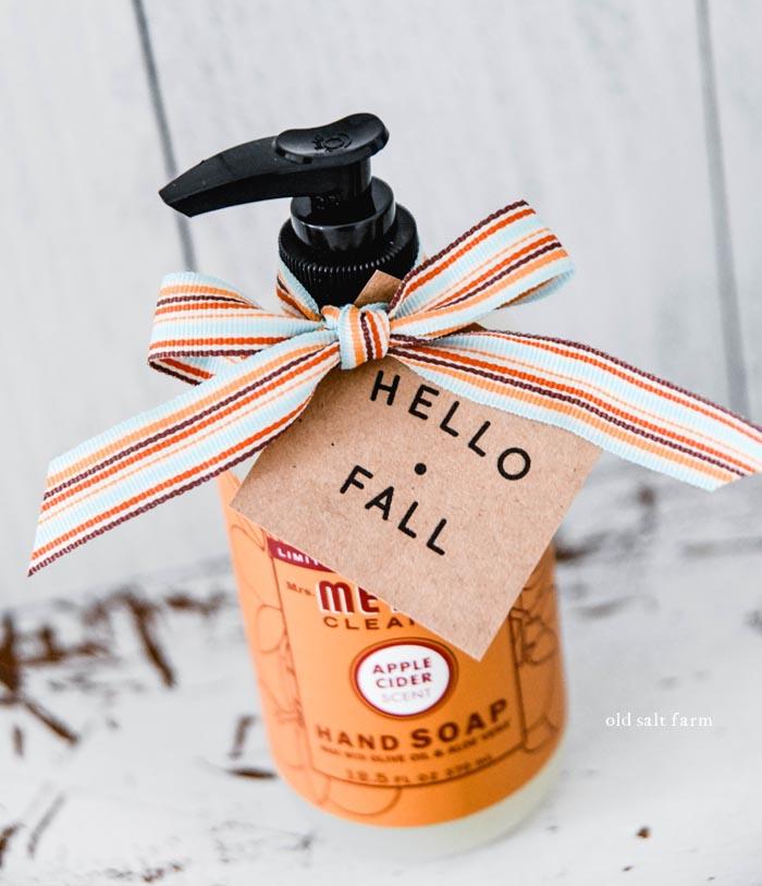 Apple Cider Hand Soap Fall Gift Idea